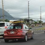 Die Surfer fahren in den Norden